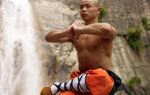 https://body.ba/pictures/article/pages/153730-kung-fu.jpg