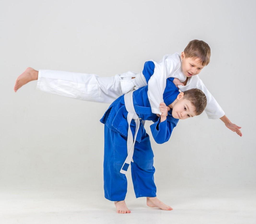 чем отличается кимоно дзюдо от карате