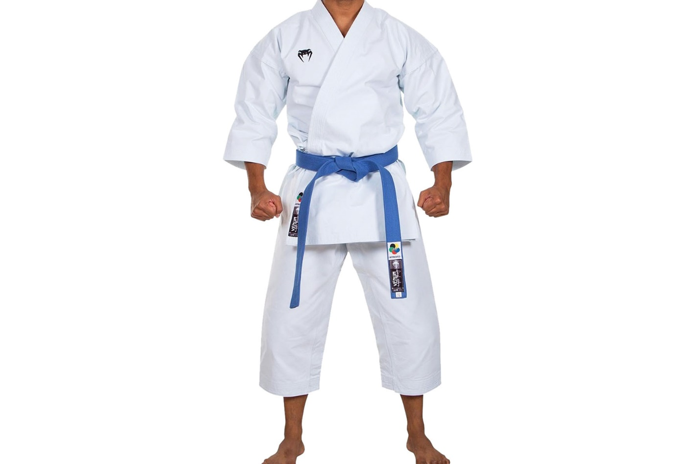 https://www.dragonsports.eu/391801-verylarge_default/venum-elite-kata-karate-gi.jpg