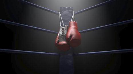 9 Лучших боксерских перчаток для тренировок - рейтинг 2022