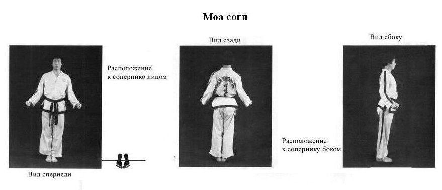 Моа Соги