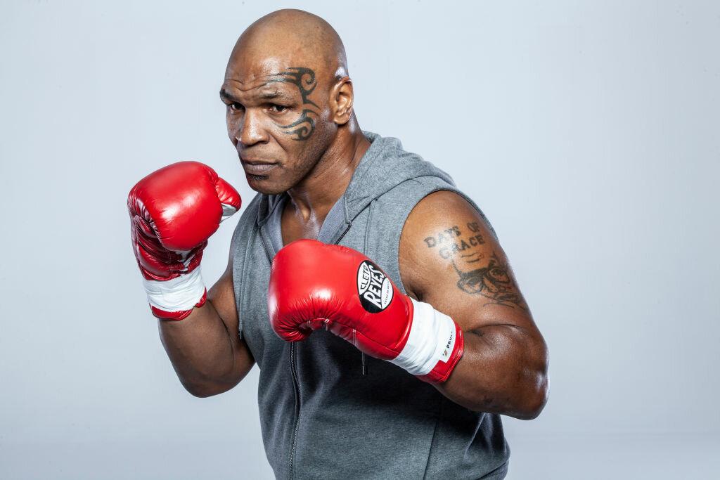 известные боксеры
