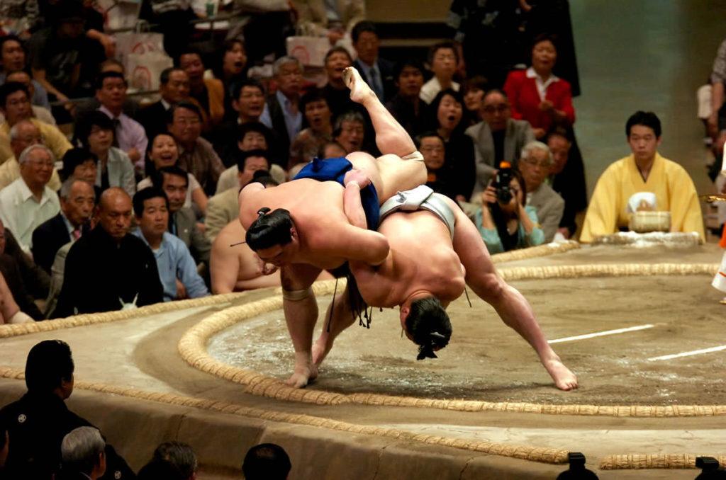 положительные качества сумо