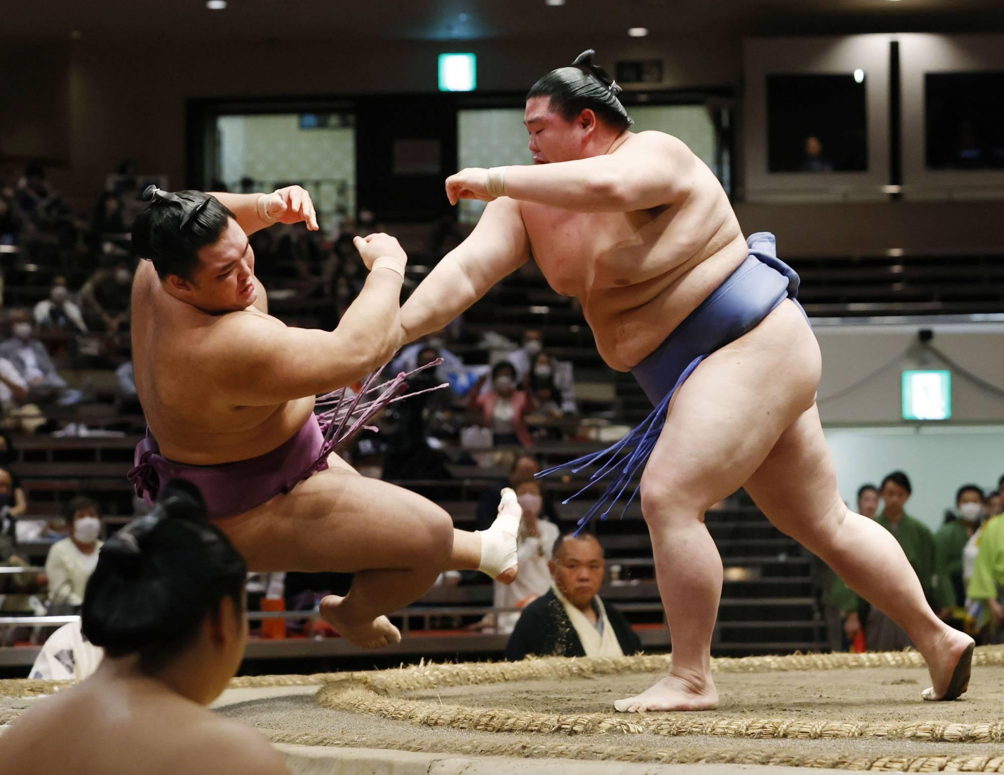 турниры в сумо