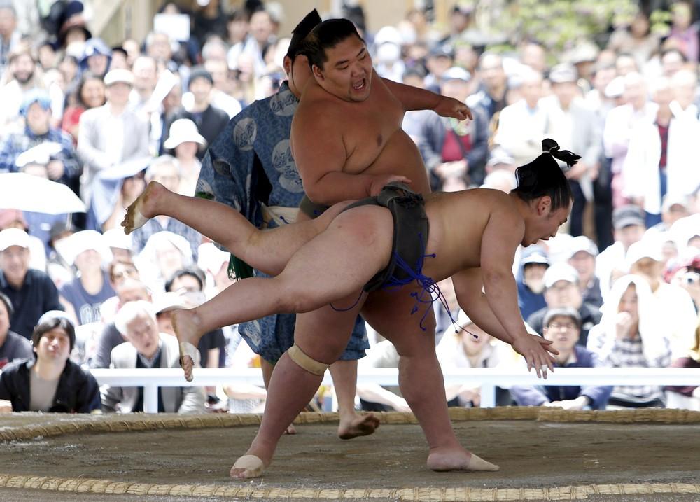 Минусы сумо