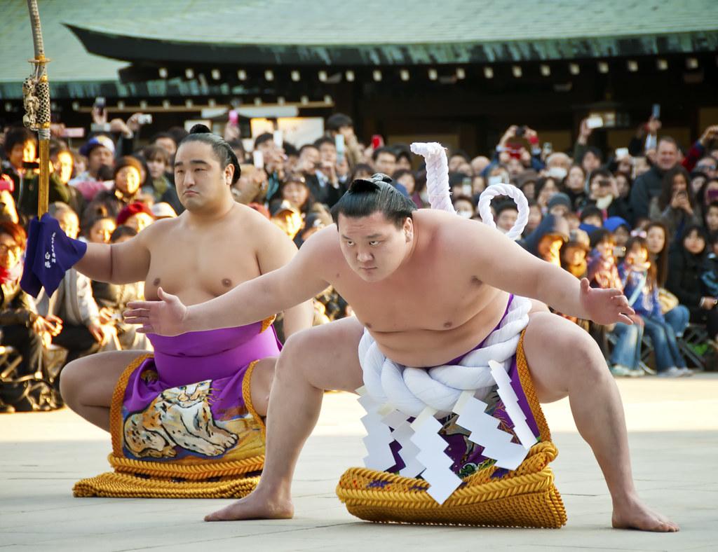 проведения боев в сумо