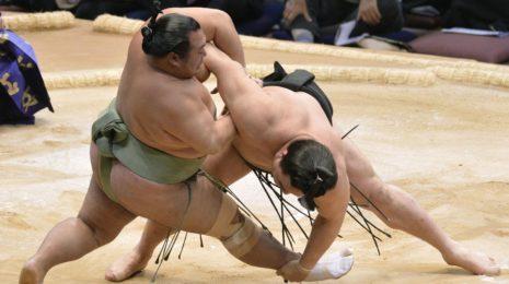 Плюсы и минусы сумо