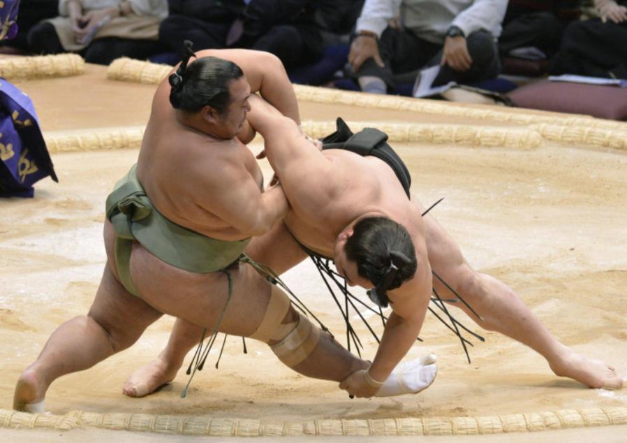 Правила борьбы сумо